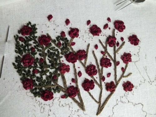 kardinal-garden-2